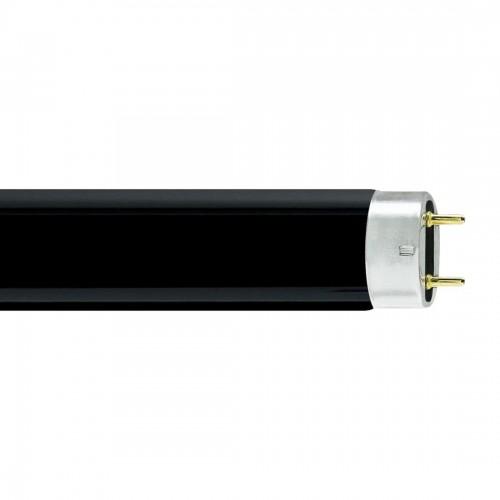 Linear Fluorescent Tube