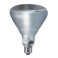 Phillips 203836 - Infrared Heat Lamp - 250W - BR40 Clear - Spot Light Bulb - 120 Volt