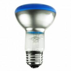 50 Watt - R20 - Transparent Blue - 130Volt -  Medium (E26) Base - 50R20/TB