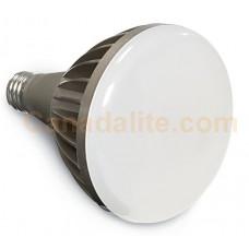Verbatin 98175 - LED PAR30  - Dimmable - 15 Watt - 2700K Warmwhite - 750 Lumens - 65 Watt Halogen Equal